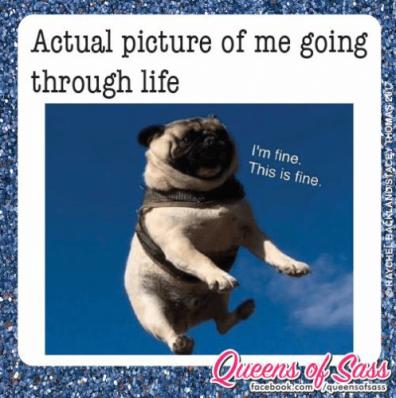 through-life-im-fine-this-is-fine-ace-book-com-aqueensosass-17337143